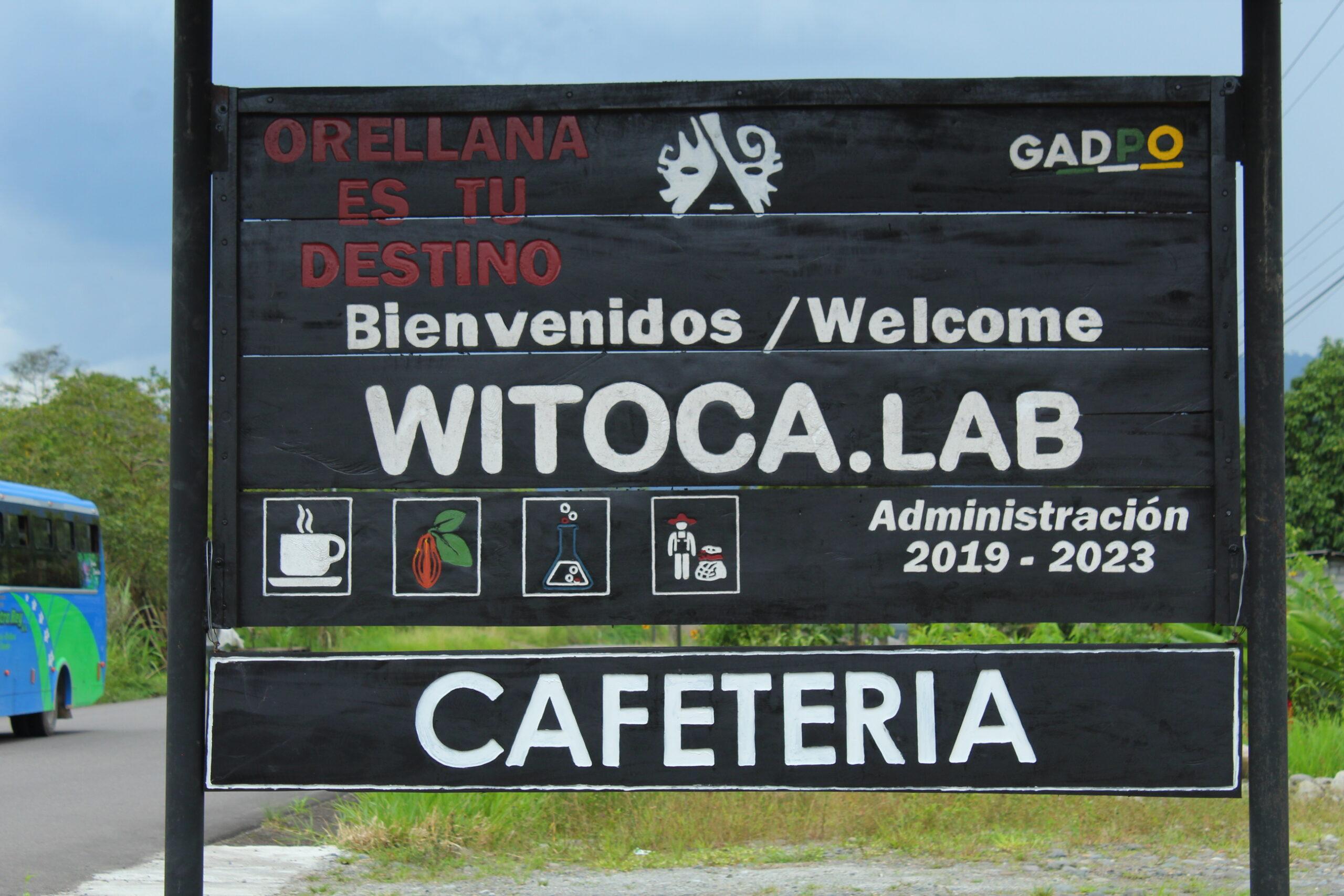 Witoca