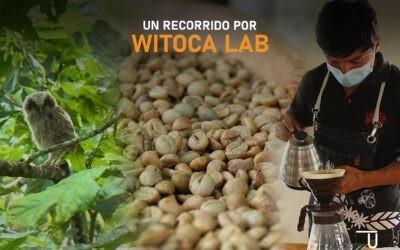 Un Recorrido por Witoca Lab